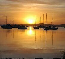 Eternal Sunset - Belmont Bay NSW  by Phil Woodman