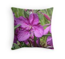 Dwarf Fireweed Throw Pillow