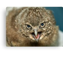 Where is my Mom !!  Canvas Print