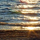 """""""As The Sun Sets"""" by Fotography by Felisa ~"""