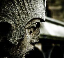 The Watcher by Brian Canavan