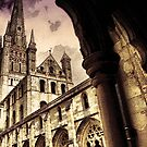 Norwich Cathedral  by Catherine Hamilton-Veal  ©