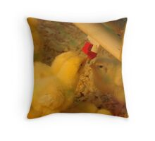 Sexy Chicks Throw Pillow