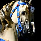 Happy Horses by ragman