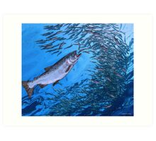 Chinook Salmon Art Print