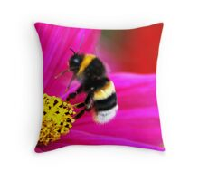 The Mystery Of A Bumblebee's Flight Throw Pillow