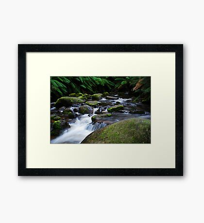 Toorongo River  Framed Print