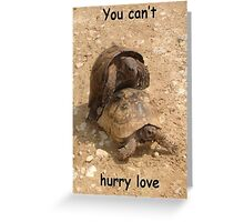 You Can't Hurry Love - MatingTortoise Humour Greeting Card