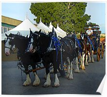 Budweiser Clydesdales & Wagon Poster