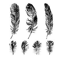 hand drawn feathers design Photographic Print