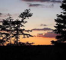 North Rim at Sunset by DawnJM