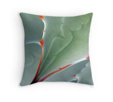 Aerial View Throw Pillow