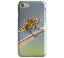 Slender Skimmer Dragonfly iPhone Case/Skin