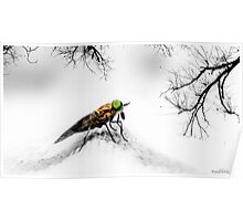 Insect art 01 Poster