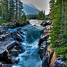 Heading South,Kooteny National Park by PFrogg