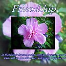Friendship Card by Greeting Cards by Tracy DeVore