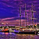 Sail Boston - Peacemaker by LudaNayvelt