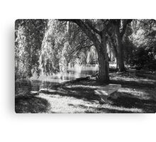 Serenity Under the Willow Trees Canvas Print