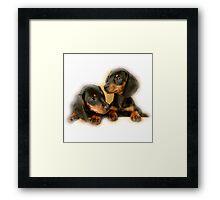 Dachshund Dogs Framed Print