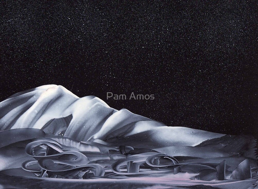 Sleigh Ride by Pam Amos