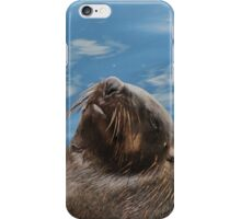 Daydreaming seal iPhone Case/Skin