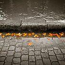 Canal Saint Martin, Paris by Laurent Hunziker
