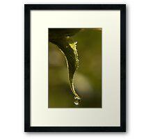 Sunflower Droplet Framed Print