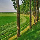 Farmland or water.....? by Adri  Padmos
