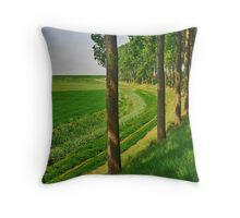 Farmland or water.....? Throw Pillow