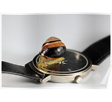 Snail on a watch Poster
