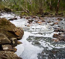Nigretta Falls Downstream by Murray Wills