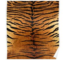 Tiger Strips Fur Poster