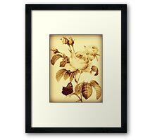"""""""Butterfly's Rest"""" Vintage Inspired Digital Art / Avalon Media Framed Print"""