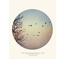 Caged Birds - Circle Print Photographic Print