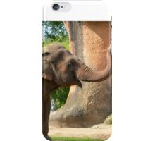 Dust Bath for Elephant iPhone Case/Skin