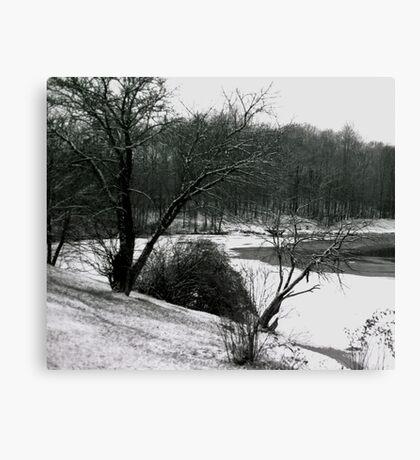072606-24 Canvas Print