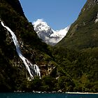 waterfall by David Gallagher