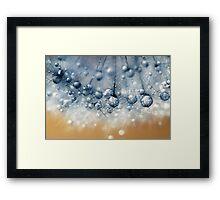Sea Blue Dandy Framed Print