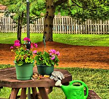 Spot-On Gardening by Trudy Wilkerson