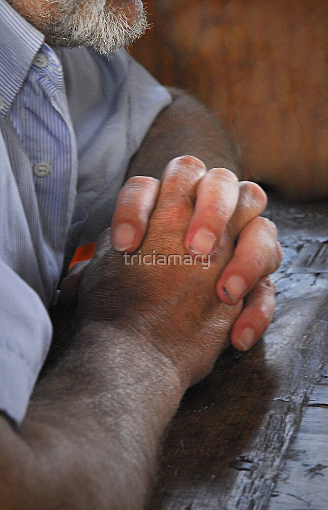The Vintner's hands by triciamary
