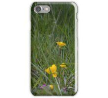 Creeping buttercup (Ranunculus repens) iPhone Case/Skin