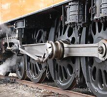 Train Show  by Vonnie Murfin