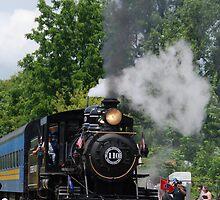 Train Show 2 by Vonnie Murfin