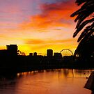 Dawn Silhouettes Across The Yarra by David McMahon