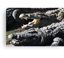 Reptile Smile Canvas Print