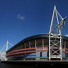 Millennium Stadium  by Anthony Thomas