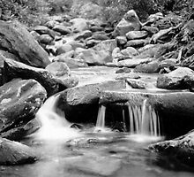 Streams of Gray by Bob Hardy
