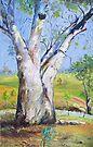 Gum Tree Hancocks Lookout by Virginia McGowan