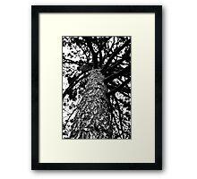 Monochrome Tree Framed Print