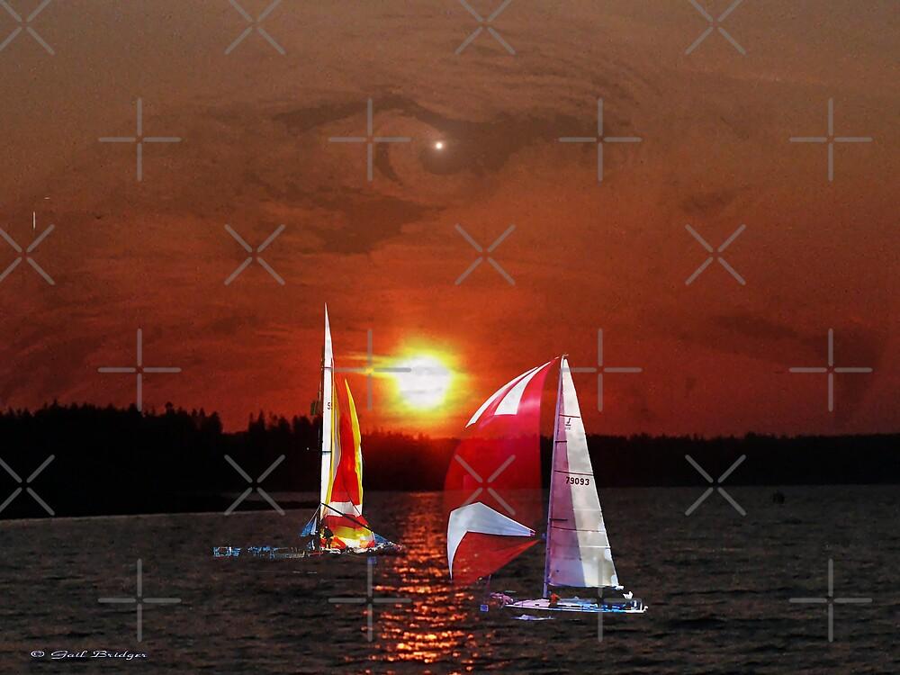 Sailing by Gail Bridger